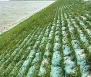 China Needle Punch Nonwoven Geotextile Silt Filter GeoBags for slope protection and vegetation establishment on sale