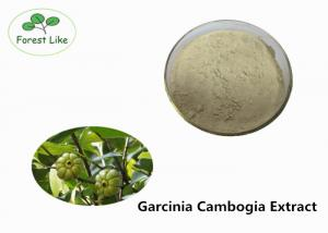 China Food Grade Garcinia Cambogia Extract 60% Hydroxy Citric Acid Pure Plant Extract on sale