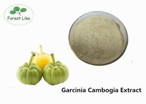 China Weight Loss Garcinia Cambogia Extract 50% Hydroxy Citric Acid Meidical Grade on sale