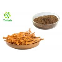 China Cordyceps Militaris Mushroom Extract Powder Cordycepin Polysaccharides Adenosine on sale