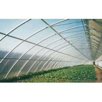 China 4mm 6mm 8mm Clear Greenhouse Polycarbonate Sheets For Construction Roofing on sale