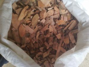 China Dried Rhodomyrtus tomentosa roots slice for herb medicine Gang nian gen on sale
