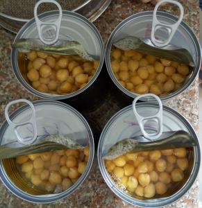 China Mild Taste Chickpeas Canned Garbanzo Beans Extremely Versatile Ingredient on sale