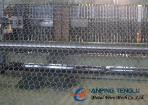 China Hexagonal Wire Netting With Corrosion Resostamce & Oxdation Resistance on sale