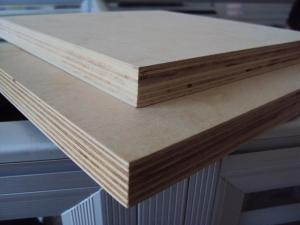 Quality Furniture Material Birch plywood for sale