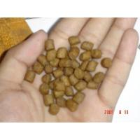 Professional excellent qaulity cat food machinery in China