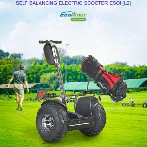 China 2018 fashion 19 inch fat tire two wheel electric chariot,golf electric scooters on sale