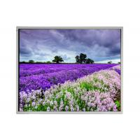 "LM190E05-SL02 LG 19"" IPS TFT LCD Panel for Industrial Application"
