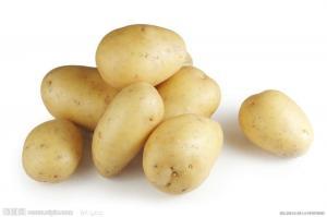 China 2014 New Crop Thin Skin Smooth Fresh Holland Potatoes 50 - 100g No Fleck on sale