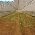 Farming Rigger Greenhouse Drip Irrigation System