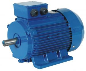 Quality Good Price Y2 Series Aluminum Housing 3 Phase Induction Motor 2P 2800rpm for sale