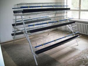 China Laying hen breeder chinese design cheap chicken coops on sale