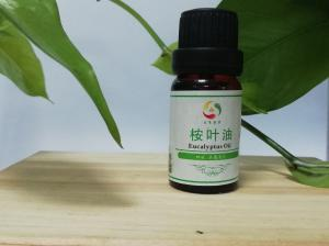 China 100% pure natural essential manufacturer 70% 80% CP,BP,USP,EP Eucalyptol leaf oil on sale