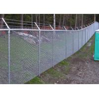 PVC Coated Chain Link Fence manufacture supply/Decorative chain Link Wire Fence