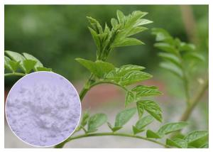 China Skin Care Natural Cosmetic Ingredients Liquorice Root Extract White Powder 90% HPLC on sale