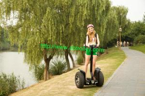 China Beauty electric stunt scooter electric skateboard electric Segway on sale