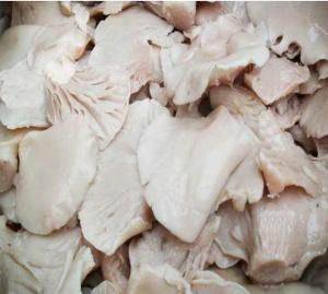 China Factory Price China NEW CROP Canned Oyster Mushroom Whole in Brine on sale