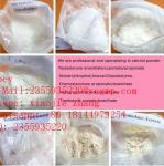 CAS 314728-85-3 Pharmaceutical Raw Materials Sunifiram White Powder For Brain