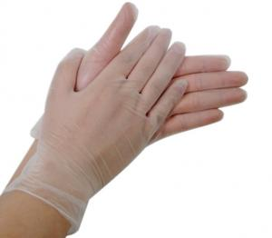 China Disposable Vinyl PVC gloves with powdered / powder free on sale