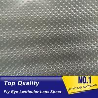 fly eye lens array 3d led light guide film lenticular honeycomb array lens sheet