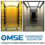 VVVF Traction Type Passenger Elevator with Good Quality and Reasonable Price with Different Decoration