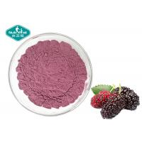 China Nutrifirst Mulberry Fruit Powder Dry Storage Support Healthy Vision And Appetite on sale