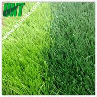China Artificial Plastic Grass Turf For Soccer Field on sale
