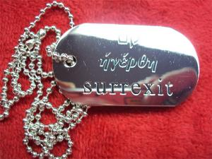 China Metal engraved logo dog tags, zinc alloy, white steel plated, metal dog tags for promotion on sale