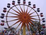 Flower Cabins Design Amusement Park Ferris Wheel Driven By Electric Control System