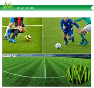 China Outdoor Monofilament Artificial Grass Lawns For Multi-sports With CE Approved on sale