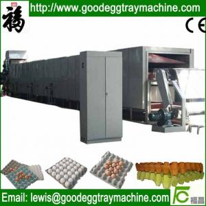 China Paper product forming machine chicken eggs box machine on sale