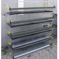 Layer Quail Cage For Sale & Layer Quail Cage For Poultry Farm Equipment(Whatsapp +86 13331359638)