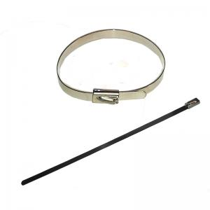 China Naked Surface 0.4mm  thickness adjustable Ladder pvc coated stainless steel cable tie on sale