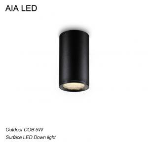 China IP65 surface mounted led downlight&LED Ceiling light for outdoor used on sale
