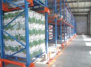 China Blue FIFO Shuttle Racking System , Metal Warehouse Shelving Racks Customized Size on sale