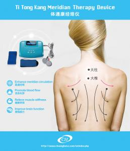 China Traditional Bio - Electric Therapy Portable Electrotherapy Device 30*23*13 Cm on sale