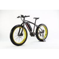 48V 10Ah Fat Tire Mountain Electric Bike 350W  Electric Powered Mountain Bike