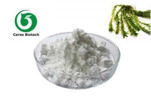 China Health Care 85% 98% Natural Fucoidan Extract Powder on sale