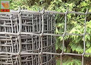 China Garden Mesh Netting for Climbing Plant Support Hole Open 19 mm 0.5 Meters Wide on sale