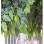 hot sale plastic  banyan tree, artificial banyan tree