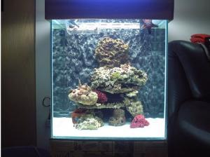 China 1ft/2ft/3ft/4ft IP68 Waterproof aquarium led light on sale