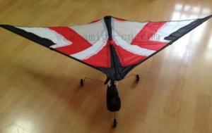 China DIY UAV Aircraft Aeromodelling-WJ01RC-KITE on sale