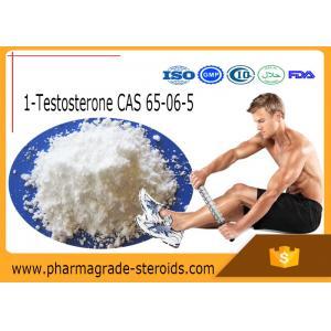 Quality 65-06-5 Testosterone Anabolic Steroid 1-Testosterone 1-Test Cyp ( Dihydroboldenone ) for sale