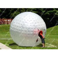 Beach Sports Inflatable Globe Ball , Kids inflatable hamster ball