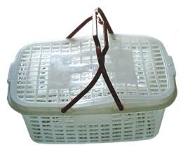 China plastic product,food basket (PP+PE) on sale