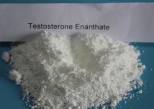 China Test E Testosterone Anabolic Steroid CAS 315-37-7 For Power Gaining on sale