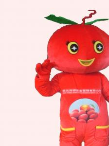 Quality handmade tomatoes mascot cartoon costumes for kids and adults for sale
