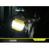 IP 54 White Solar powered motion detector Light 0.55w UT Portable For Farmer Guard