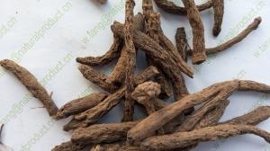 China Common Curculigo Rhizome Curculigo orchioides Gaertn root traditional chinese herb Xian mao on sale