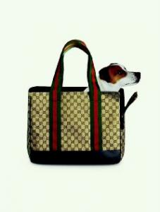China Fashion Pet Carrier Bag on sale